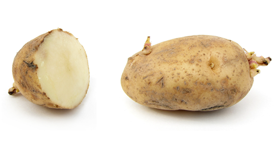 It's a potato, plain and simple - no way to make it any more exciting than that...