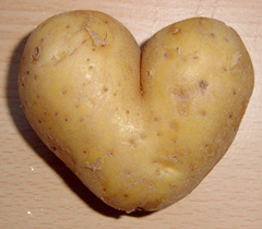 We're not sure what caused this potato to mutate like this but hey - we LOVE it!