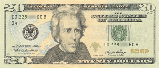 A Twenty Dollar Bill - your reward for an experiment done well