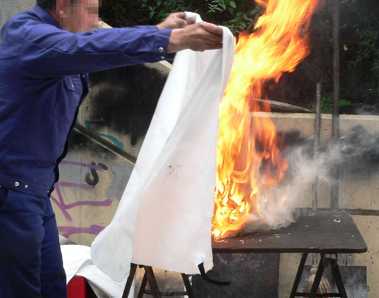 Believe it or not - this is NOT one of Reeko's latest lab experiments (Reeko's flames are much bigger)