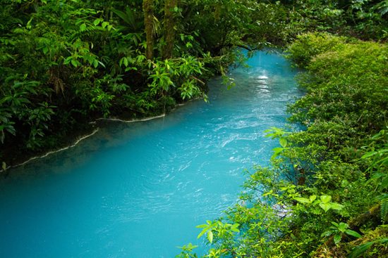 The breathtaking blue turquois color of the Rio Celeste river
