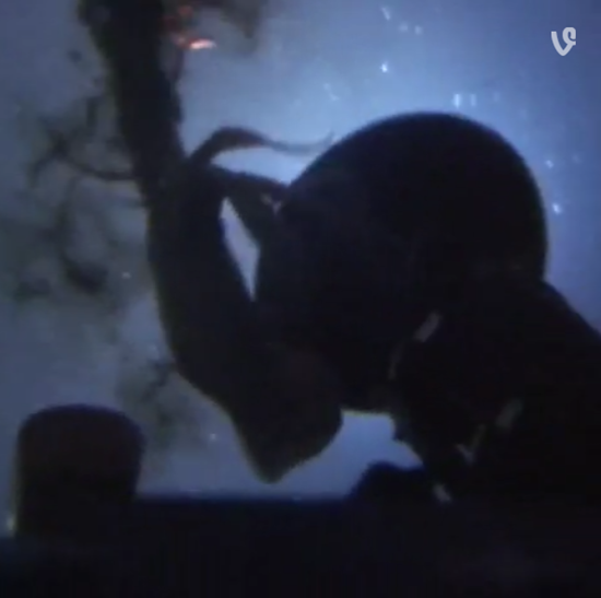 Greenpeace submarine attacked by pair of Humboldt squids