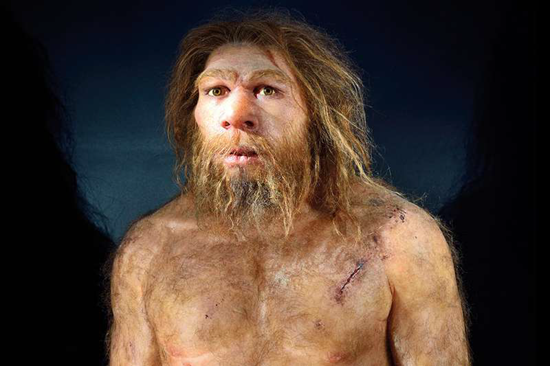 Neanderthal puzzled