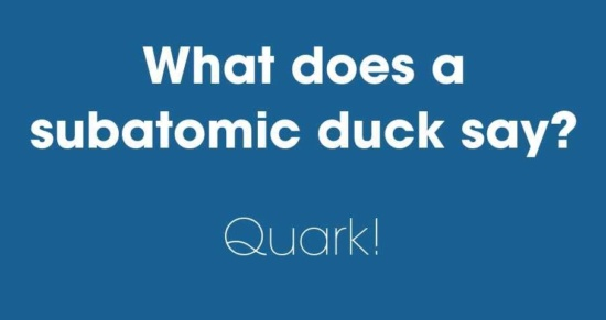 What does a subatomic duck say